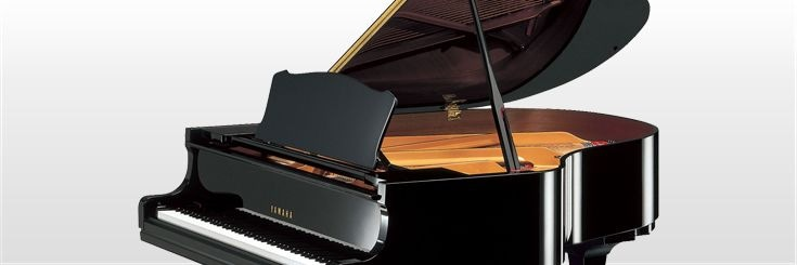 Header Banner - Educational Equipments - School Grand Pianos